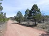 6388 Torrey Pines Drive - Photo 13