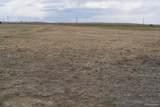 16670 Prairie Vista Lane - Photo 6
