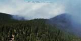 Squaw Pass Road - Photo 18