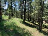 4465 Forest Trail - Photo 6