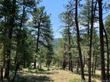 4465 Forest Trail - Photo 7