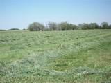 35701 County Road 6 - Photo 19