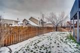 21810 Saddlebrook Drive - Photo 30