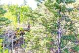 1311 Signal Ridge Road - Photo 10