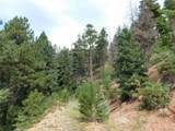 2298 Elk Park Road - Photo 2