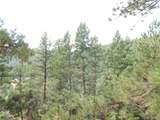 2298 Elk Park Road - Photo 33