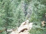 2298 Elk Park Road - Photo 34