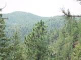 2298 Elk Park Road - Photo 36
