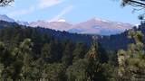28298 Lone Elk Trail - Photo 7