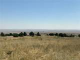 Lot 137 Colorado Land & Livestock - Photo 10