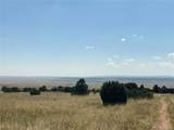 Lot 137 Colorado Land & Livestock - Photo 12