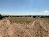 Lot 137 Colorado Land & Livestock - Photo 13