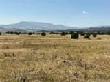 Lot 137 Colorado Land & Livestock - Photo 7