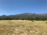 Lot 137 Colorado Land & Livestock - Photo 9