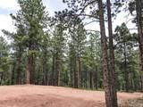 1049 Bison Creek Trail - Photo 5