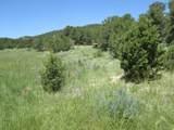 Meadow Lane - Photo 21