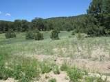 Meadow Lane - Photo 7