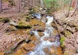 1265 Mill Creek Road - Photo 6