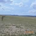 1 Salt Ranch Trail - Photo 23