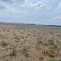 1 Salt Ranch Trail - Photo 31