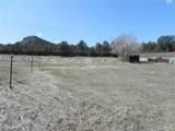 9525 Spruce Mountain Road - Photo 20