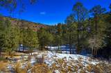 14850 Quandary Peak Road - Photo 15