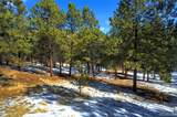 14850 Quandary Peak Road - Photo 24
