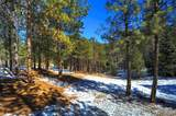 14850 Quandary Peak Road - Photo 26