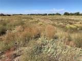 1448 Malachite Trail - Photo 5