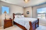 5110 Elf Owl Court - Photo 15