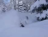 2215 Storm Meadows Drive - Photo 23