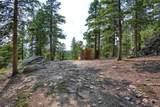 31 Wagon Wheel Trail - Photo 34