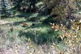 29606 Larkspur - Photo 36