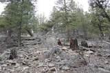 Middle Fork Vista - Photo 1