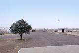 43145 Saddle Horn Drive - Photo 7