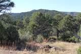 Fisher Peak Ranch Lot M5 - Photo 10