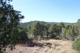 Fisher Peak Ranch Lot M5 - Photo 11