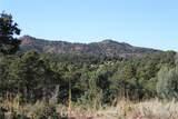 Fisher Peak Ranch Lot M5 - Photo 17