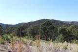 Fisher Peak Ranch Lot M5 - Photo 19