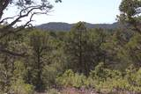 Fisher Peak Ranch Lot M5 - Photo 2