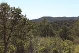 Fisher Peak Ranch Lot M5 - Photo 20