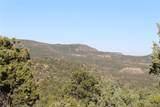 Fisher Peak Ranch Lot M5 - Photo 28