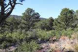 Fisher Peak Ranch Lot M5 - Photo 3
