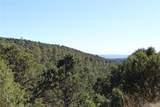 Fisher Peak Ranch Lot M5 - Photo 32