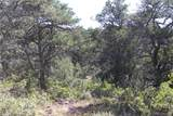 Fisher Peak Ranch Lot M5 - Photo 5