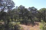 Fisher Peak Ranch Lot M5 - Photo 7