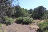 Fisher Peak Ranch Lot M5 - Photo 8