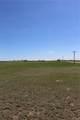 11630 Sals View - Photo 14