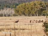 2269 Running Bear - Photo 17
