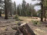 00 Middle Fork Vista - Photo 12